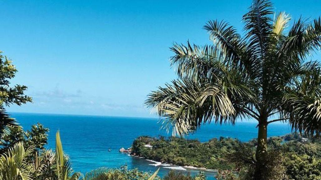 TC JAMAICA