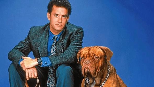 Turner And Hooch Reboot Disney Plus Tom Hanks