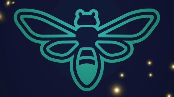 Firefly canceled Firefly Music Festival cancelled 2020 coronavirus