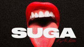 Suga by Megan Thee Stallion album artwork