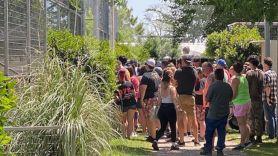 Tiger King Park zoo Joe Exotic open coronavirus crowds people location, photo via TMZ