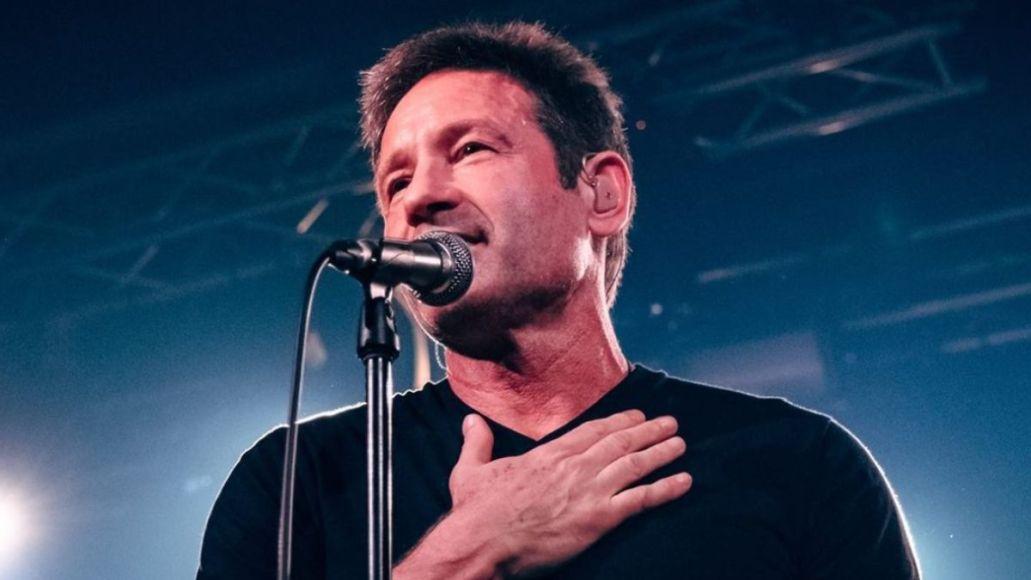 david duchovny gestureland new album